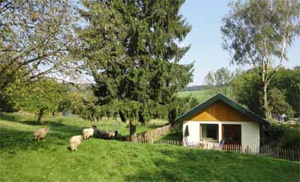 bungalow vanuit boomgaard